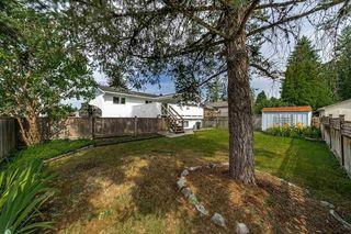"Photo 20: 12056 211 Street in Maple Ridge: Northwest Maple Ridge House for sale in ""NORTHWEST MAPLE RIDGE"" : MLS®# R2389864"