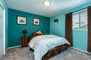 Photo 15: 14 Daniels Way: Sherwood Park House for sale : MLS®# E4199508