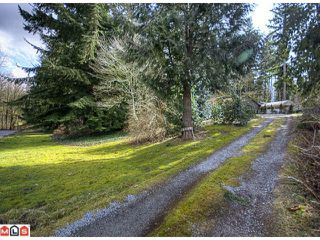 Photo 7: 15758 MOUNTAIN VIEW Drive in Surrey: Grandview Surrey House for sale (South Surrey White Rock)  : MLS®# F1107106