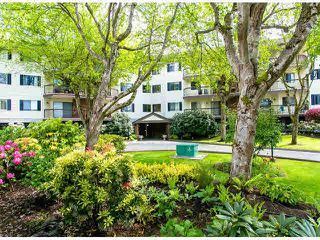 """Main Photo: 205 10240 RYAN Road in Richmond: South Arm Condo for sale in """"STORNOWAY"""" : MLS®# V1063345"""