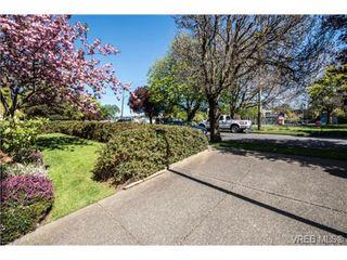 Photo 3: 408 2560 Wark St in VICTORIA: Vi Hillside Condo for sale (Victoria)  : MLS®# 727561