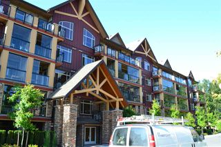 "Main Photo: 535 8288 207A Street in Langley: Willoughby Heights Condo for sale in ""YORKSON CREEK"" : MLS®# R2129009"
