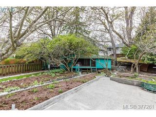 Photo 18: 2734 Roseberry Ave in VICTORIA: Vi Oaklands House for sale (Victoria)  : MLS®# 757376