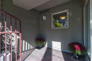 """Photo 10: 108 1195 W 8TH Avenue in Vancouver: Fairview VW Condo for sale in """"ALDER COURT"""" (Vancouver West)  : MLS®# R2212011"""