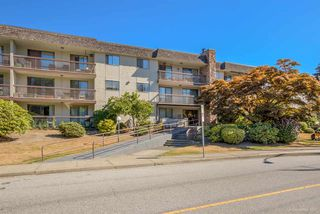 "Photo 19: 304 2381 BURY Avenue in Port Coquitlam: Central Pt Coquitlam Condo for sale in ""RIVERSIDE MANOR"" : MLS®# R2220682"