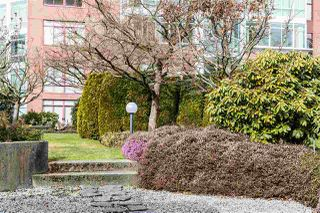 Photo 13: 1503 130 E 2ND Street in North Vancouver: Lower Lonsdale Condo for sale : MLS®# R2266705