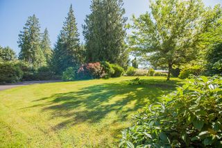 "Photo 20: 12621 ANSELL Street in Maple Ridge: Websters Corners House for sale in ""ACADEMY PARK"" : MLS®# R2289429"