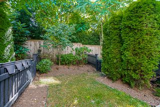 """Photo 33: 17 15192 62A Avenue in Surrey: Sullivan Station Townhouse for sale in """"St. James Gate"""" : MLS®# R2291689"""