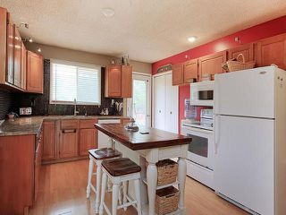Photo 8: 103 53304 RANGE ROAD 30: Rural Parkland County House for sale : MLS®# E4124813