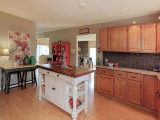 Photo 10: 103 53304 RANGE ROAD 30: Rural Parkland County House for sale : MLS®# E4124813