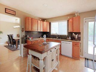 Photo 9: 103 53304 RANGE ROAD 30: Rural Parkland County House for sale : MLS®# E4124813