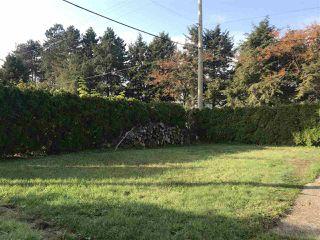 Photo 4: 4910 LAUREL Street in Burnaby: Greentree Village House for sale (Burnaby South)  : MLS®# R2317589