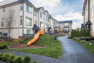 """Photo 17: 69 8217 204B Street in Langley: Willoughby Heights Townhouse for sale in """"Everly Green"""" : MLS®# R2326141"""
