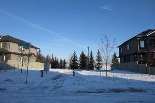 Photo 30: 1350 ADAMSON Drive in Edmonton: Zone 55 House for sale : MLS®# E4139267
