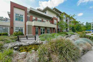 "Photo 19: A411 20211 66 Avenue in Langley: Willoughby Heights Condo for sale in ""Elements"" : MLS®# R2333318"