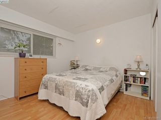 Photo 11: 4034 Hodgson Place in VICTORIA: SE Lake Hill Single Family Detached for sale (Saanich East)  : MLS®# 405945