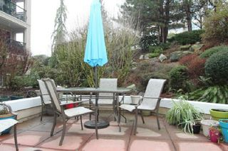 "Photo 11: 111 3172 GLADWIN Road in Abbotsford: Central Abbotsford Condo for sale in ""Regency Park"" : MLS®# R2346875"