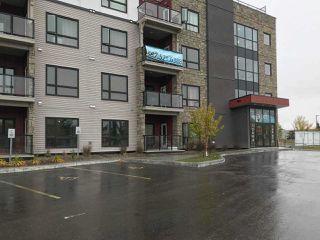 Main Photo: 416 12804 140 Avenue in Edmonton: Zone 27 Condo for sale : MLS®# E4151023
