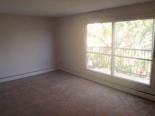 Photo 13: 11140 108 Avenue in Edmonton: Zone 08 Multi-Family Commercial for sale : MLS®# E4153437