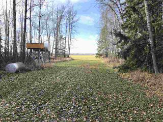 Photo 41: 1005 HWY 663: Rural Westlock County House for sale : MLS®# E4178090