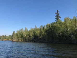 Photo 10: 1 Scott IS in Kenora: Vacant Land for sale : MLS®# TB191549