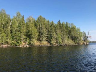 Photo 8: 1 Scott IS in Kenora: Vacant Land for sale : MLS®# TB191549