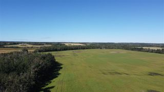 Photo 7: Twp 474 Hwy 795: Rural Wetaskiwin County Rural Land/Vacant Lot for sale : MLS®# E4211589