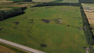 Photo 2: Twp 474 Hwy 795: Rural Wetaskiwin County Rural Land/Vacant Lot for sale : MLS®# E4211589