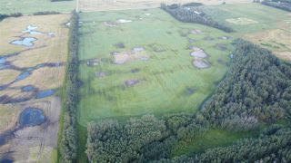 Photo 1: Twp 474 Hwy 795: Rural Wetaskiwin County Rural Land/Vacant Lot for sale : MLS®# E4211589