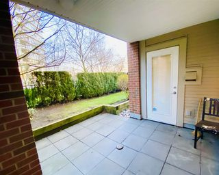 """Photo 13: 112 4783 DAWSON Street in Burnaby: Brentwood Park Condo for sale in """"COLLAGE"""" (Burnaby North)  : MLS®# R2524559"""