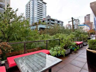 """Photo 9: 302 989 RICHARDS Street in Vancouver: Downtown VW Condo for sale in """"MONDRIAN"""" (Vancouver West)  : MLS®# V915179"""