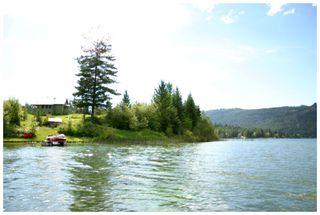 Photo 18: 3864 Pakka Road in Tappen: White Lake House for sale (Shuswap)  : MLS®# 10079884