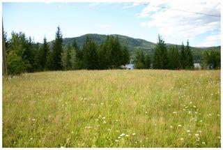 Photo 35: 3864 Pakka Road in Tappen: White Lake House for sale (Shuswap)  : MLS®# 10079884