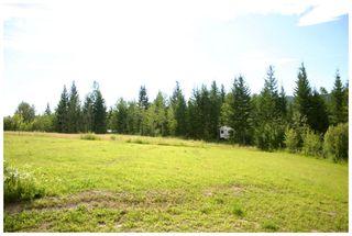 Photo 42: 3864 Pakka Road in Tappen: White Lake House for sale (Shuswap)  : MLS®# 10079884