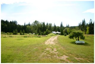 Photo 27: 3864 Pakka Road in Tappen: White Lake House for sale (Shuswap)  : MLS®# 10079884
