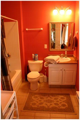 Photo 52: 3864 Pakka Road in Tappen: White Lake House for sale (Shuswap)  : MLS®# 10079884