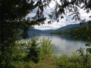 Photo 66: 3864 Pakka Road in Tappen: White Lake House for sale (Shuswap)  : MLS®# 10079884