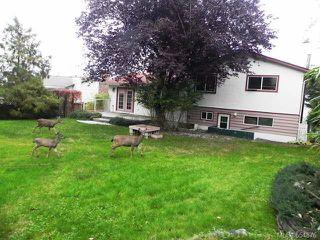 Photo 8: 541 Nootka St in COMOX: CV Comox (Town of) House for sale (Comox Valley)  : MLS®# 654876