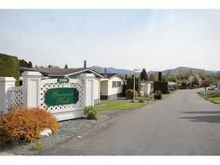 Photo 18: 97 3300 HORN Street in Abbotsford: Central Abbotsford Manufactured Home for sale : MLS®# F1436909