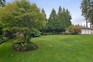 "Photo 17: 14449 32ND Avenue in Surrey: Elgin Chantrell House for sale in ""Elgin Chantrell"" (South Surrey White Rock)  : MLS®# R2108333"