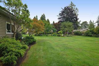 "Photo 18: 14449 32ND Avenue in Surrey: Elgin Chantrell House for sale in ""Elgin Chantrell"" (South Surrey White Rock)  : MLS®# R2108333"