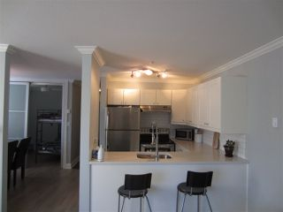 Photo 3: 105 2375 SHAUGHNESSY Street in Port Coquitlam: Central Pt Coquitlam Condo for sale : MLS®# R2128851