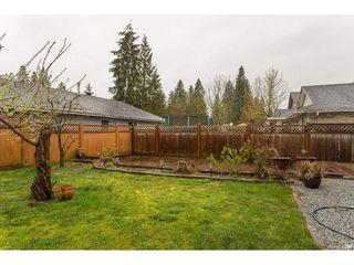 Photo 19: 20298 116B Avenue in Maple Ridge: Southwest Maple Ridge House for sale : MLS®# R2155275