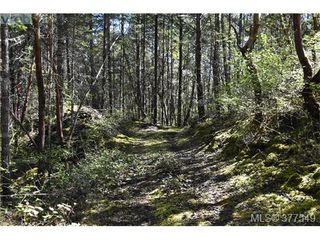 Photo 7: 4771 Munn Rd in VICTORIA: Hi Eastern Highlands Land for sale (Highlands)  : MLS®# 757982