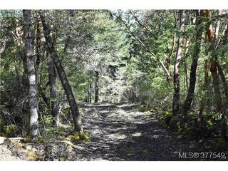 Photo 6: 4771 Munn Rd in VICTORIA: Hi Eastern Highlands Land for sale (Highlands)  : MLS®# 757982