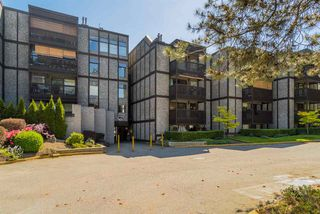 "Photo 19: 415 9672 134 Street in Surrey: Whalley Condo for sale in ""PARKWOOD-DOGWOOD"" (North Surrey)  : MLS®# R2171533"