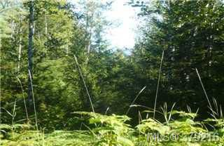 Photo 9: LOT A West Coast Rd in SHIRLEY: Sk Sheringham Pnt Land for sale (Sooke)  : MLS®# 761554