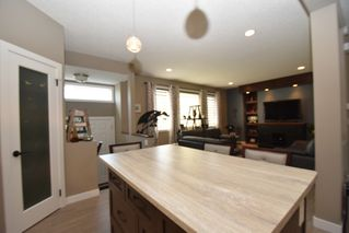 Photo 29: 262 Edward Turner Drive in Winnipeg: Sage Creek Residential for sale (2K)  : MLS®# 1718971