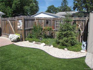 Photo 3: 189 Woodydell Avenue in Winnipeg: Meadowood Residential for sale (2E)  : MLS®# 1803911