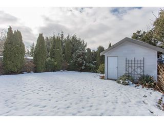 Photo 18: 12219 BONSON ROAD in Pitt Meadows: Mid Meadows House for sale : MLS®# R2239836